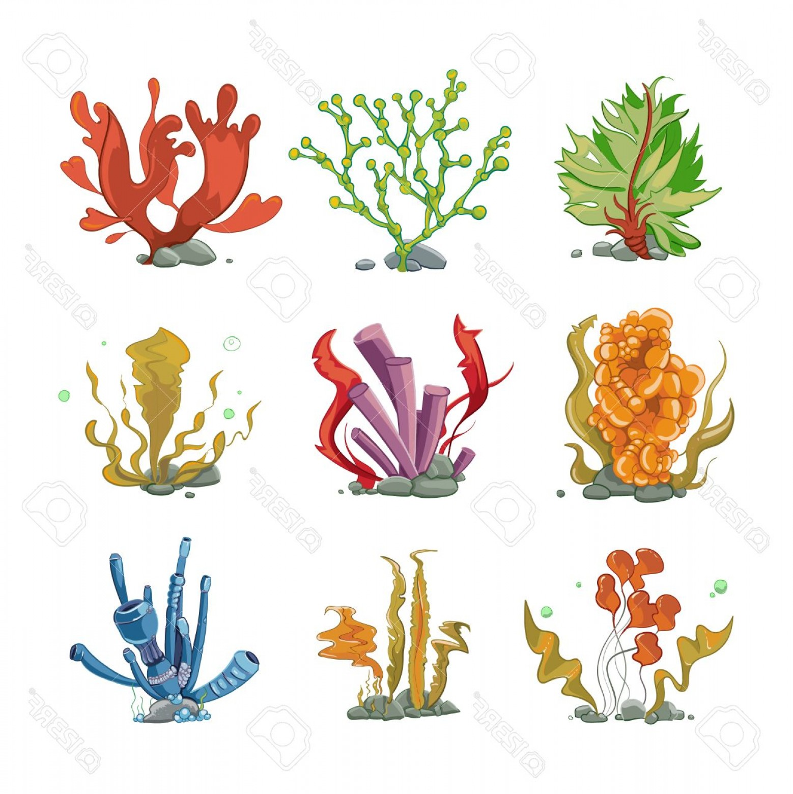 Underwater Sea Vector Art: Photostock Vector Underwater Plants In Cartoon Vector Style Ocean Life Underwater Sea Nature Seaweed Illustration