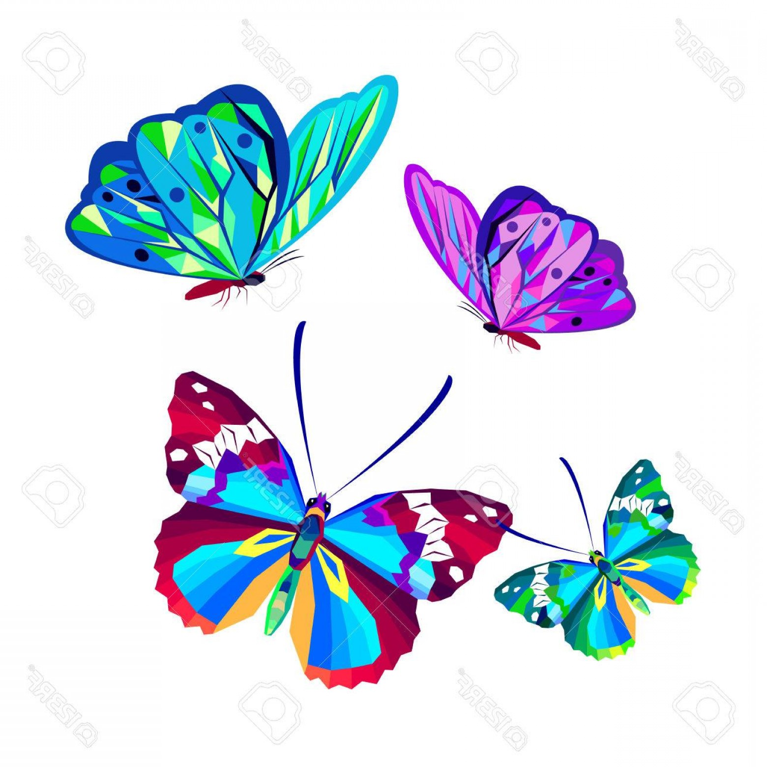 Vector Butterfly Clip Art: Photostock Vector Vector Butterfly Insect Art White Decorative Color