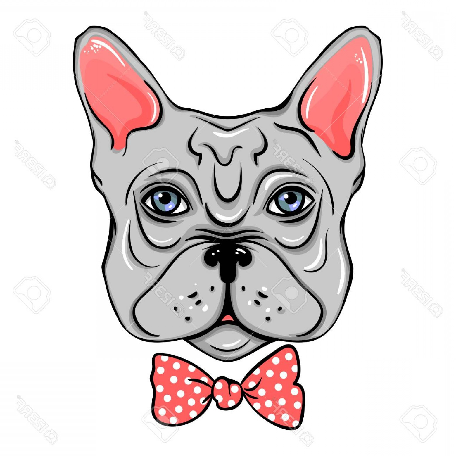 Vector Smiling Bulldog: Photostock Vector Vector French Bulldog Illustration Of A Cute Dog Wit Bow Cartoon Animals Funny Pictures