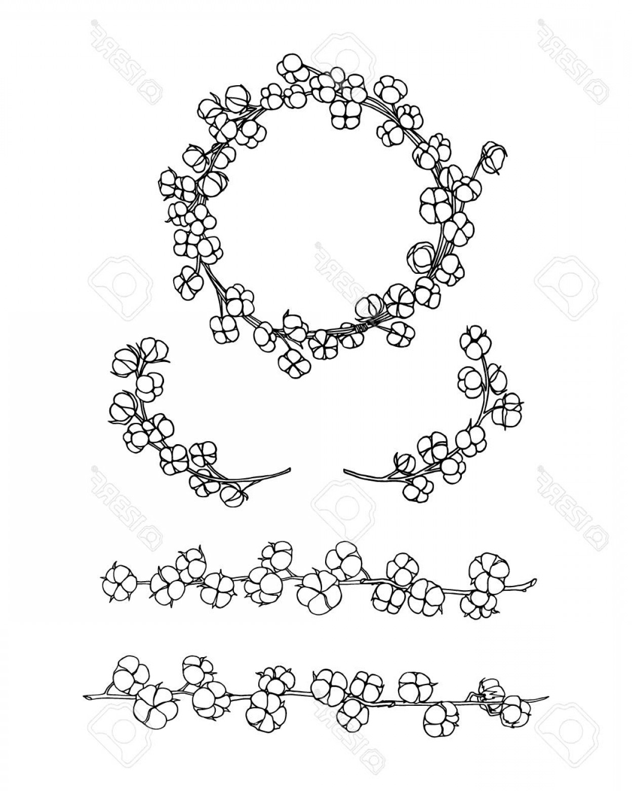 Cotton Vector Graphic: Photostock Vector Vector Graphic Set Of Wreath Laurel And Borders Of Cotton Flowers Beautiful Floral Design Elements I