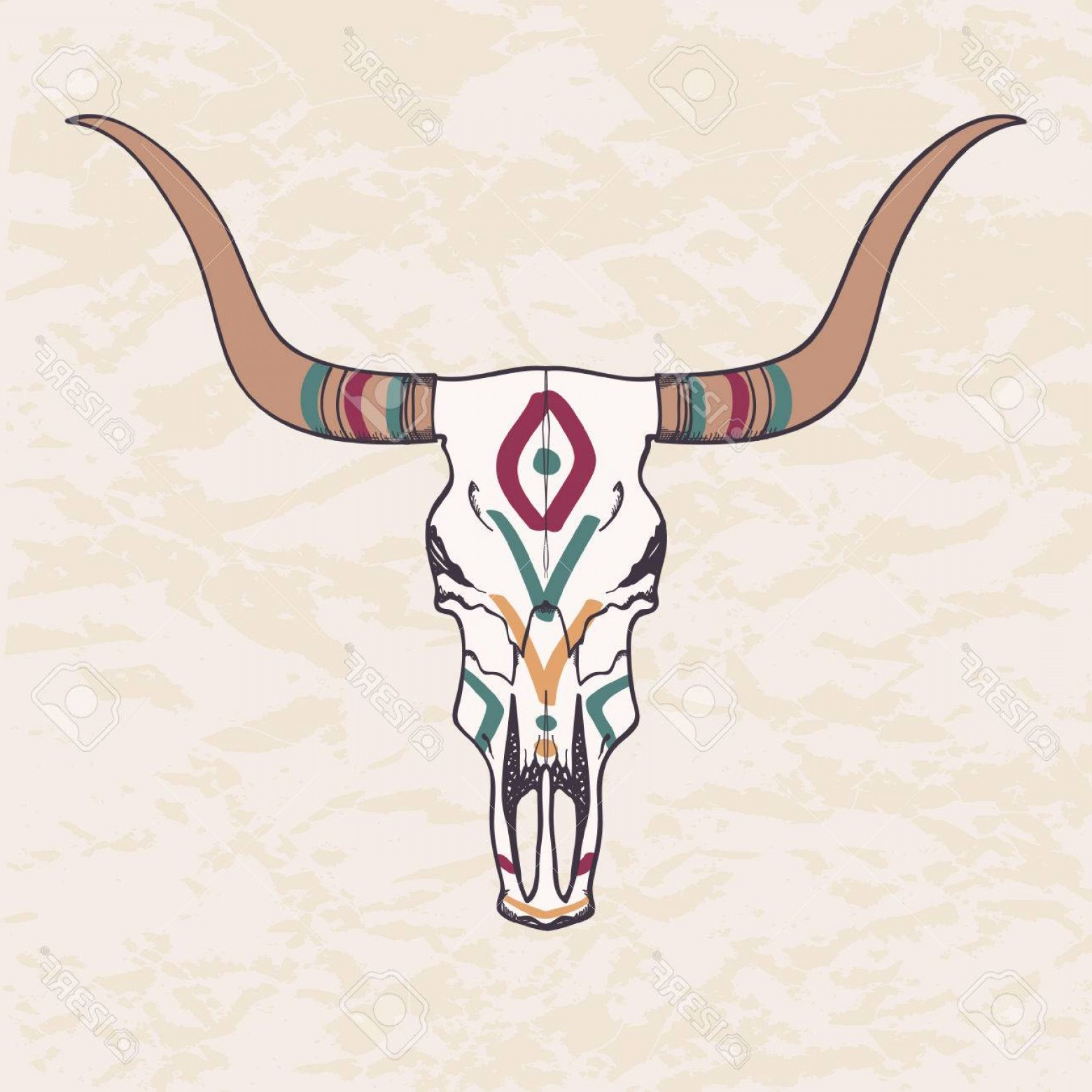 Longhorn Skull Vector: Photostock Vector Vector Illustration Of Bull Skull