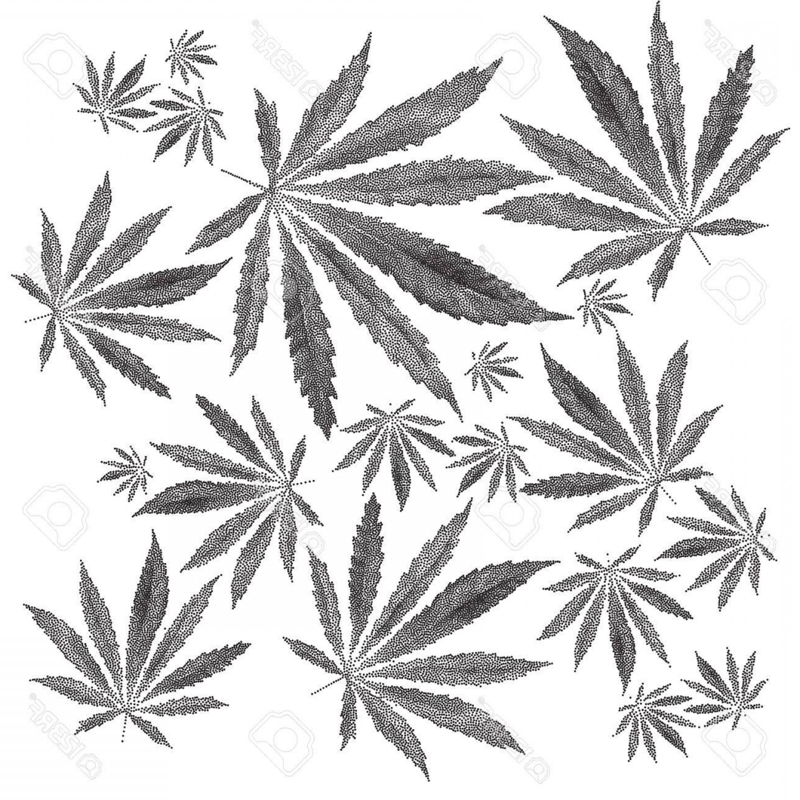 Black And White Vector Image Of Weed Plants: Photostock Vector Vector Illustration Of Dotted Cannabis Sativa Leaf In Old Style Marijuana Hemp Leaf Isolated On Whit