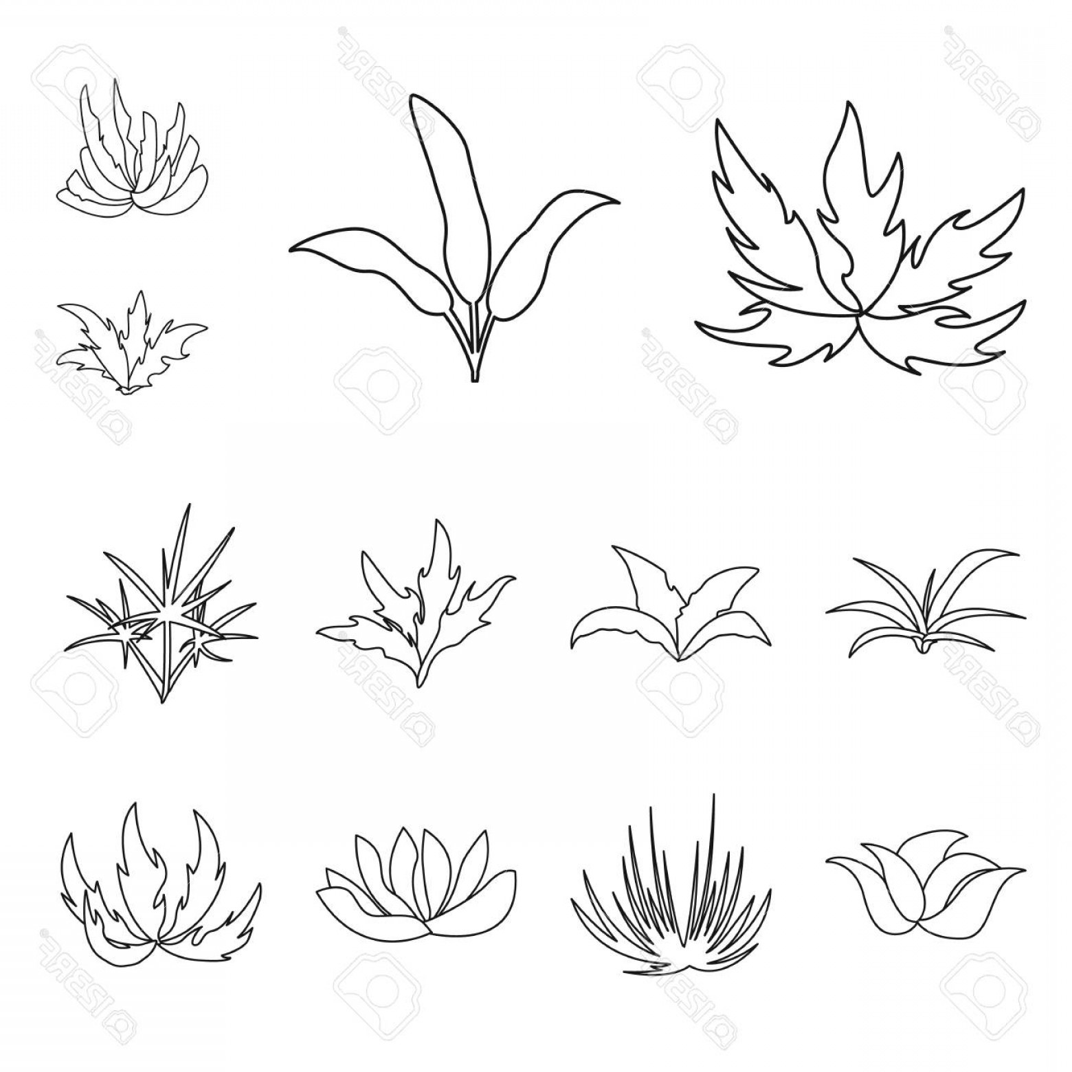 Floral Vector Icon: Photostock Vector Vector Illustration Of Hedge And Shrub Symbol Set Of Hedge And Floral Vector Icon For Stock