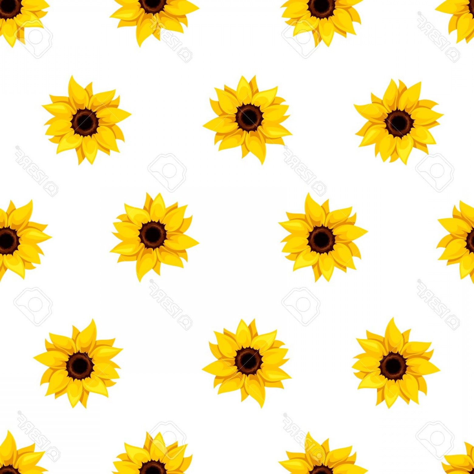 Sunflower Vector Pattern: Photostock Vector Vector Seamless Pattern With Yellow Sunflowers On A White Background