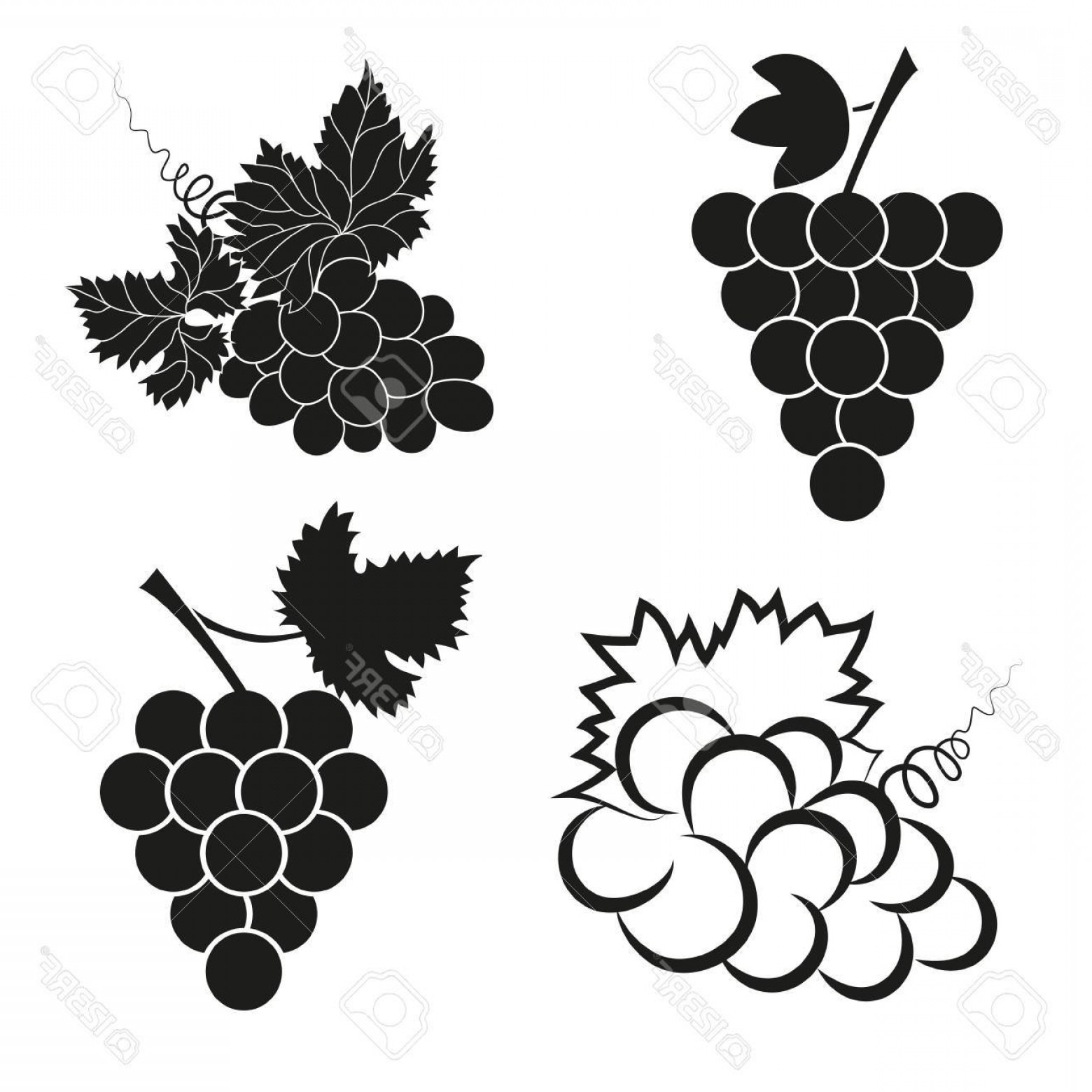 Abstract Vector Grapes: Photostock Vector Vector Set Of Abstract Grapes Icons