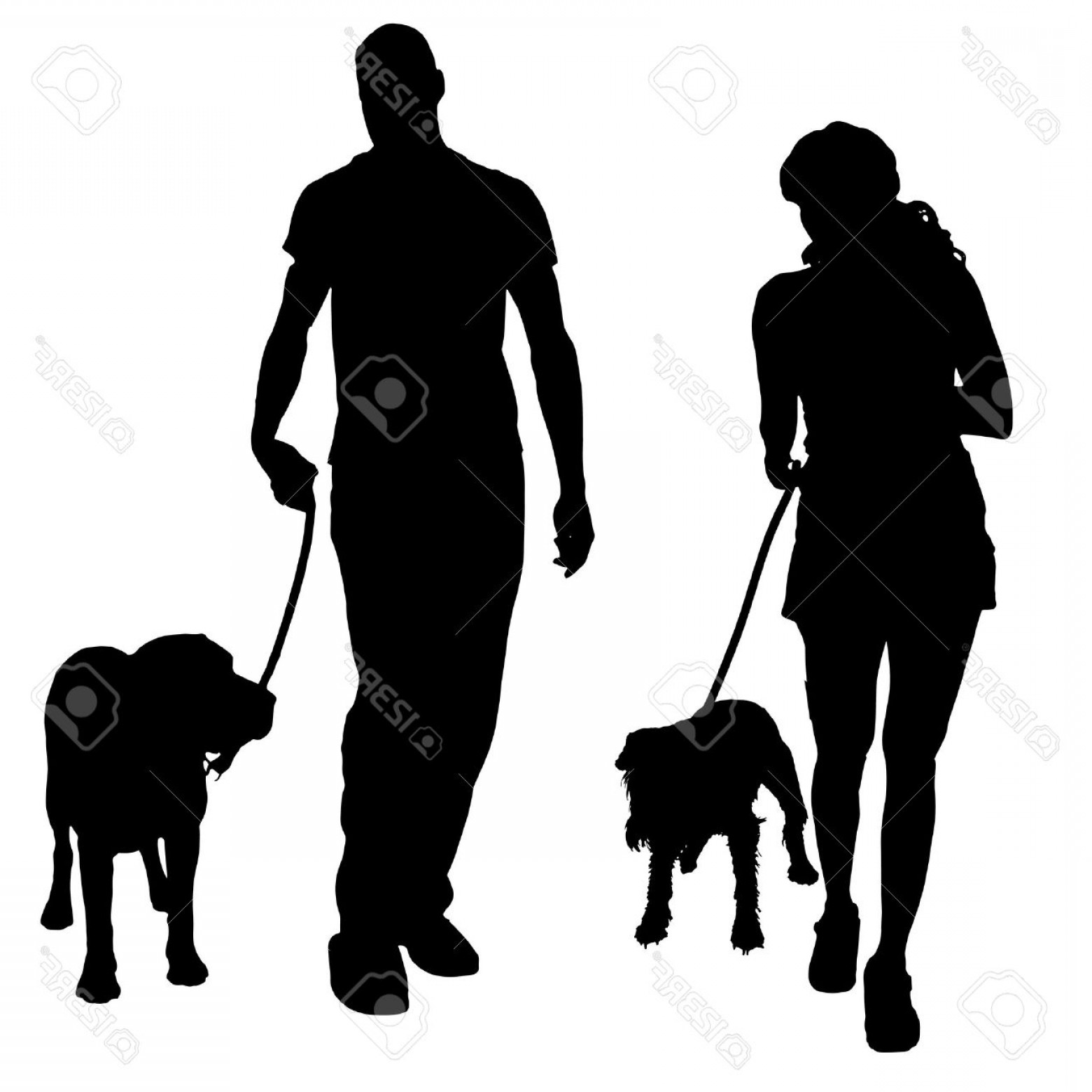 Vector Silhouette Dog Walk: Photostock Vector Vector Silhouette Of A People With A Dog