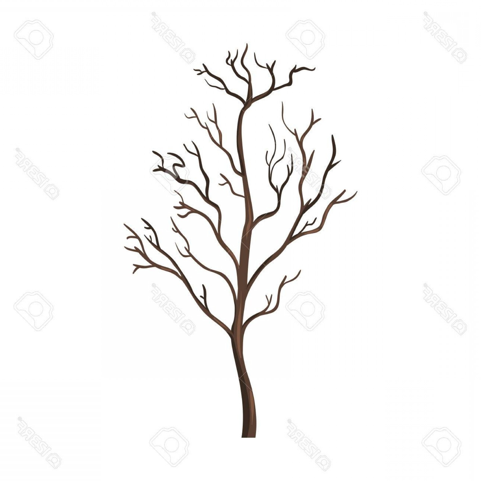 Contoon Free Black Vector Tree: Photostock Vector Vector Single Cartoon Brown Bare Tree On White Background