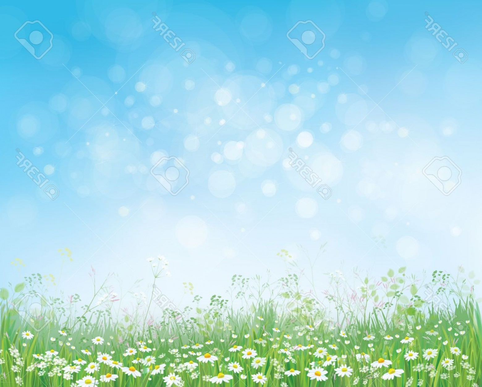 Vector Natural Background Sky: Photostock Vector Vector Summer Nature Background Blossoming Flowers Field On Blue Sky