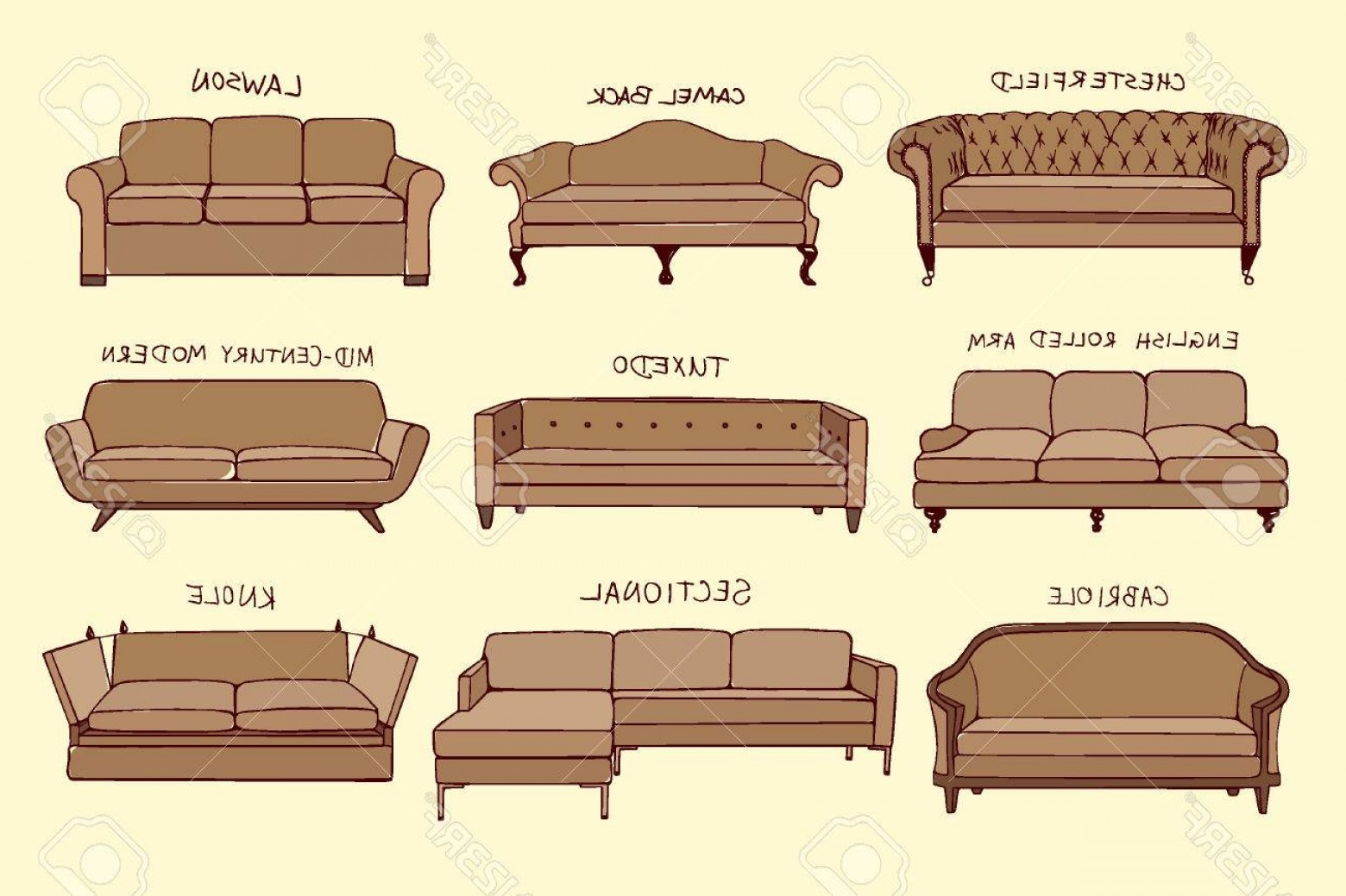 Back Of The Couch Vector: Photostock Vector Vector Visual Guide Of Sofa Design Styles Hand Drawn Sofa Set Made In Linear Style Beautiful Design