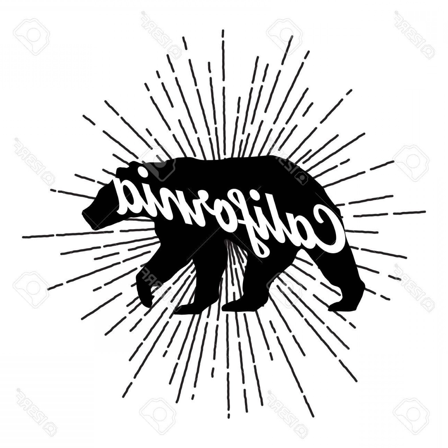 California Black And White Vector: Photostock Vector Vintage California Bear With Sunbursts Vector Graphics And Typography T Shirt Design For Apparel