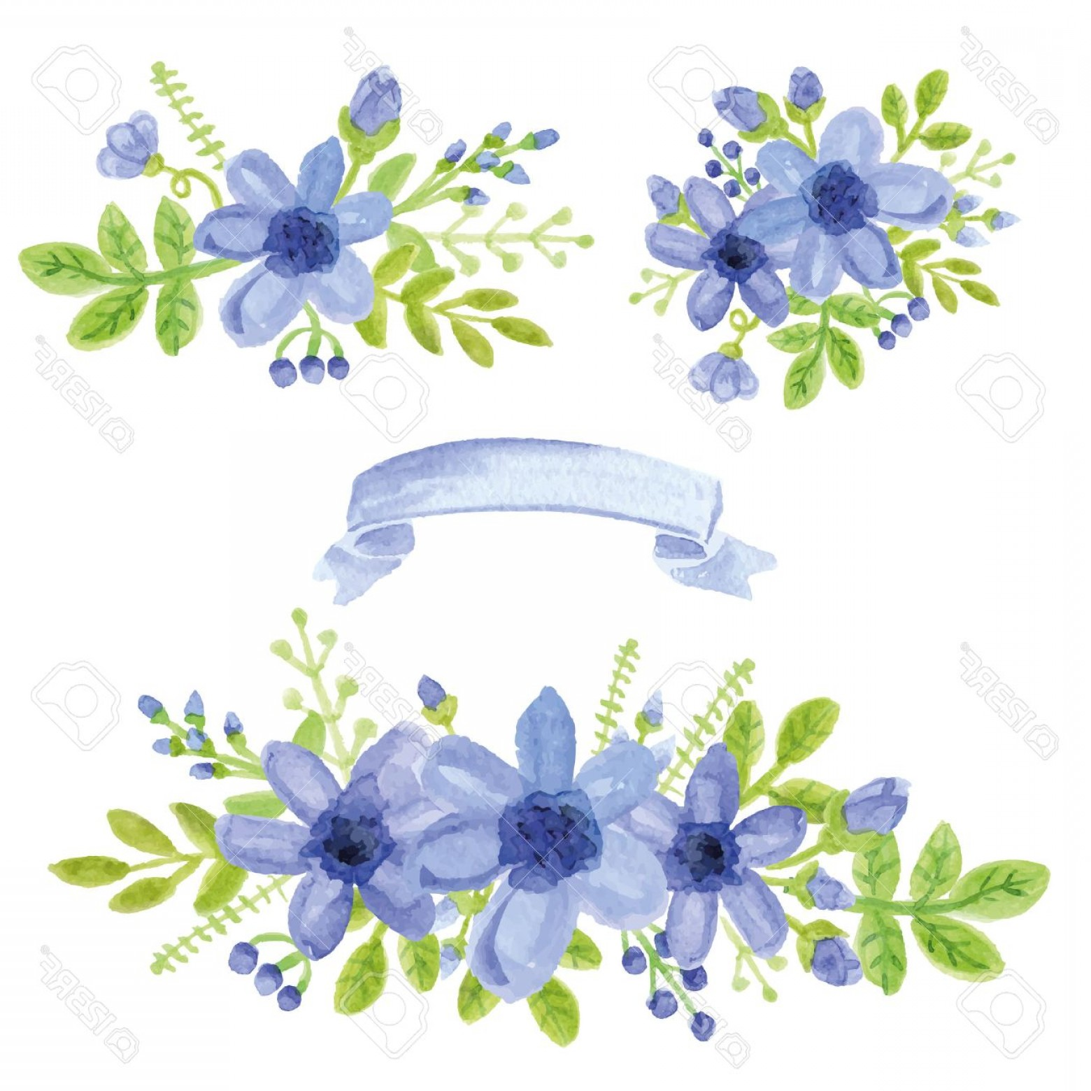 Blue Daisy Flower Vector: Photostock Vector Watercolor Blue Daisy Flowers Green Branches Leaves In Bouquet Set Hand Painted Berries Floral Ribbo