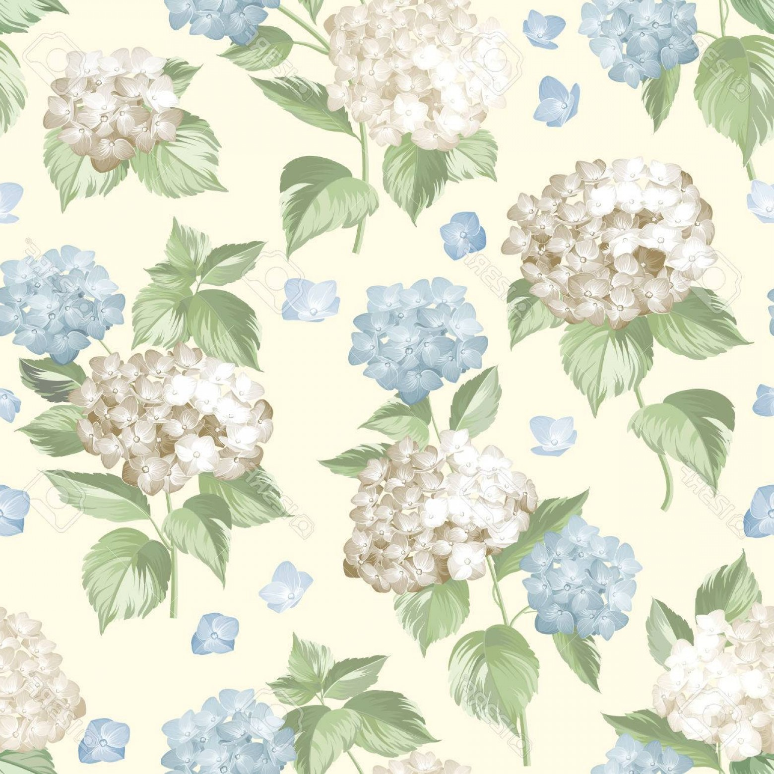 Vector Mop Flower: Photostock Vector White Flower Hydrangea On Seamless Background Mop Head Hydrangea Flower Pattern Beautiful Summer Flo