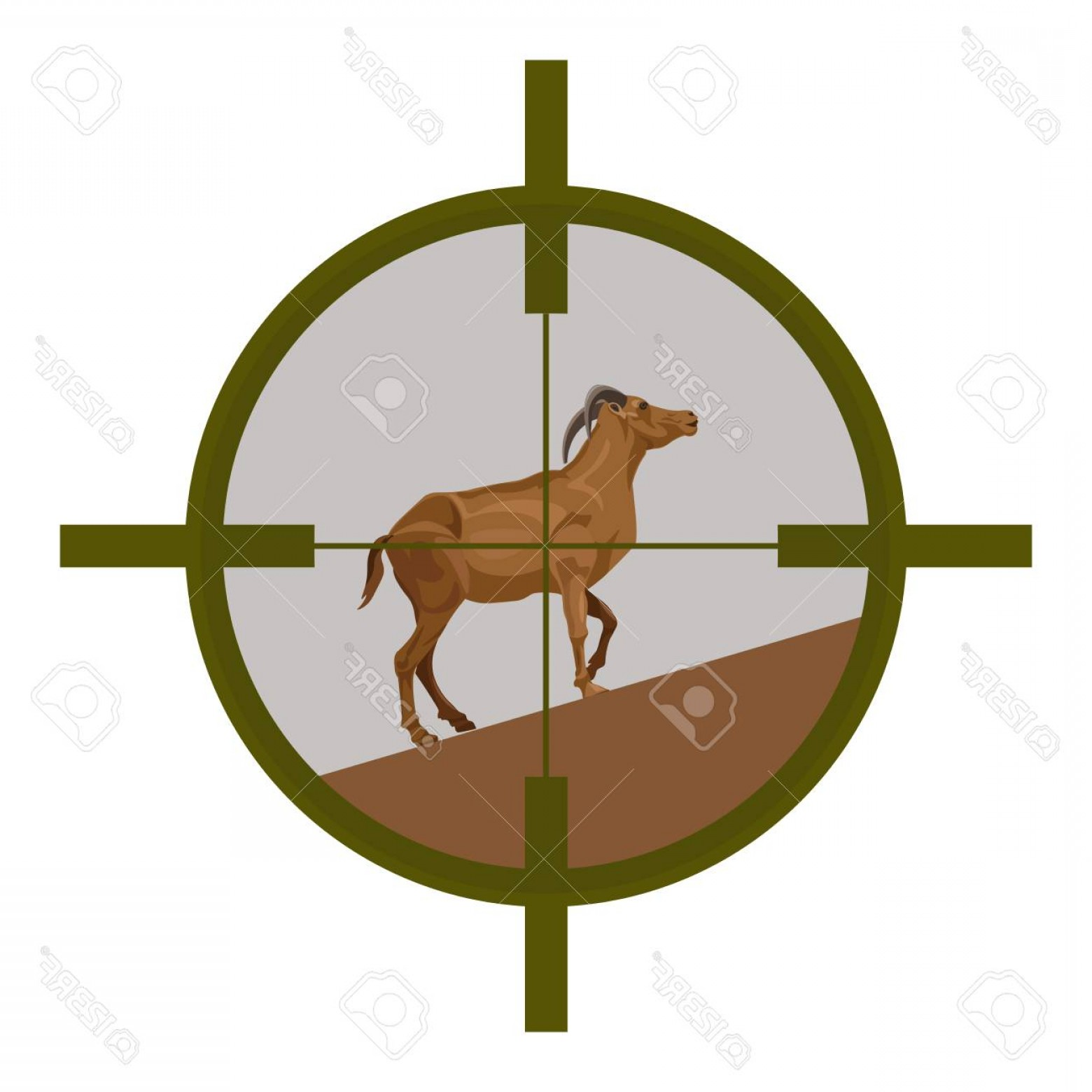 Hunting Rifle Vector Cross: Photostock Vector Wild Goat Seen In The Cross Hairs Of The Scope Of A Rifle Vector Illustration