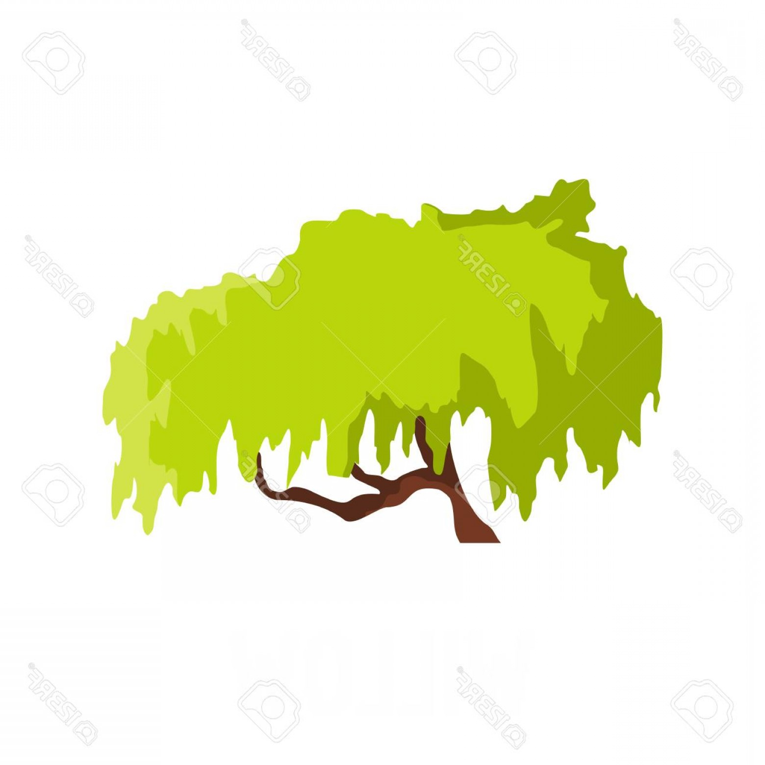 Vector Natural Willow: Photostock Vector Willow Tree Icon Flat Illustration Of Willow Tree Vector Icon Isolated On White Background