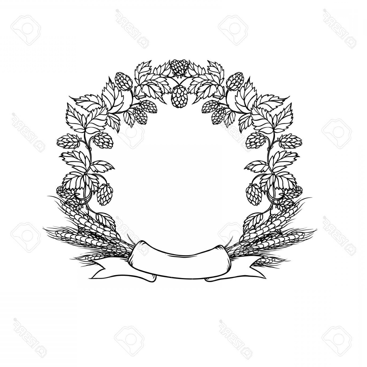 Wreath Circle Logo Vector: Photostock Vector Wreath Circle Frame From Ribbon Hops And Ear Wheat Vector Sketch Black White Illustration Emblem Of
