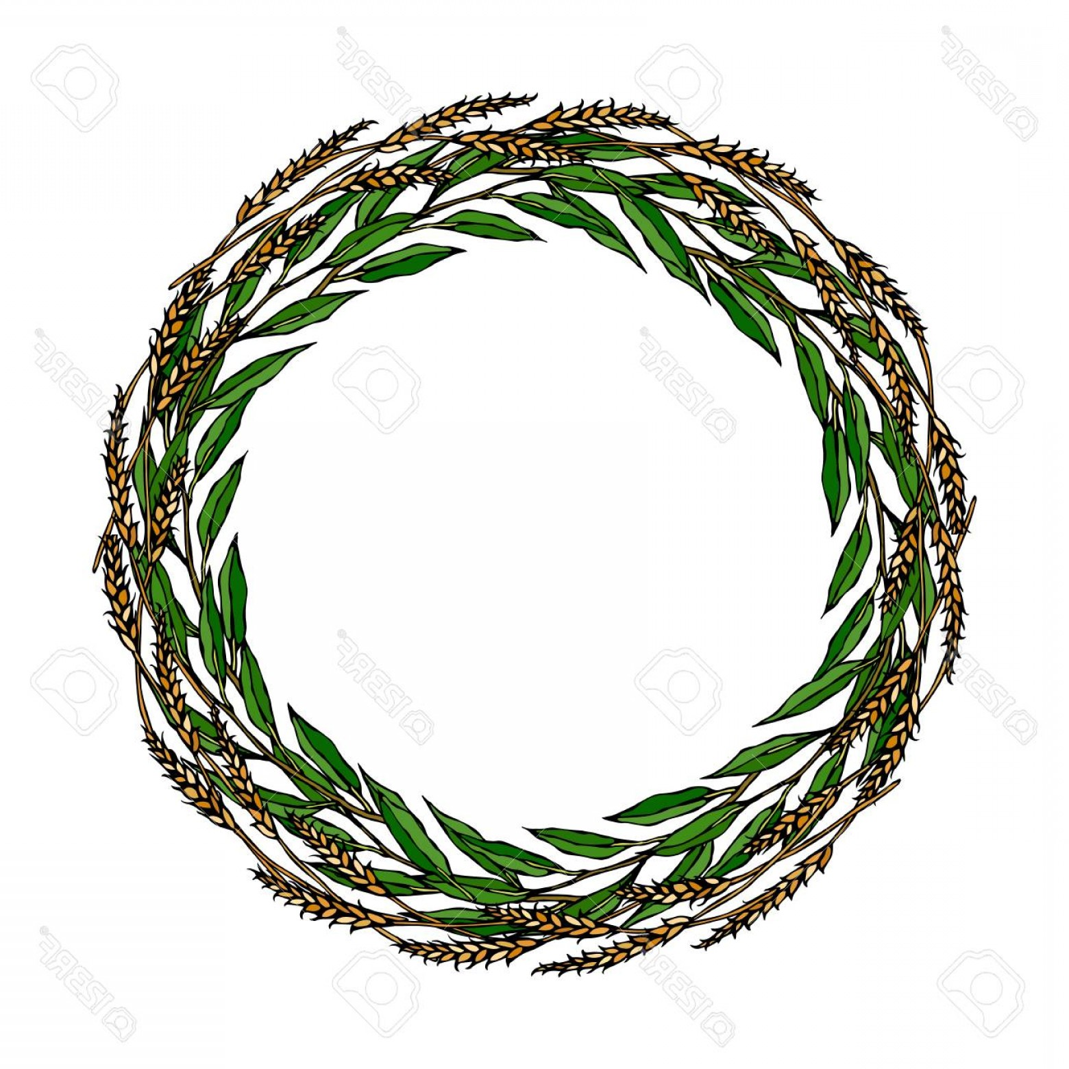 Green Bay Vector: Photostock Vector Wreath Wheat Spikelets And Green Bay Leaf Hand Written Text Round Wreath Of Malt With Space For Text