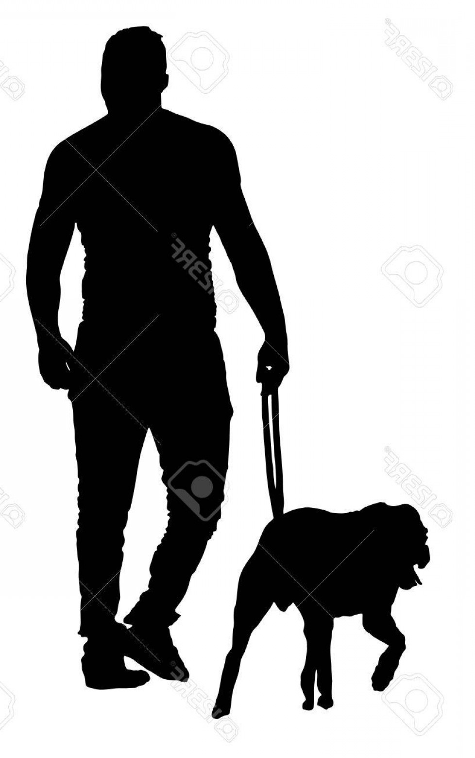 Vector Silhouette Dog Walk: Photostock Vector Young Urban Man Walking Dog Vector Silhouette Illustration Isolated On White Background