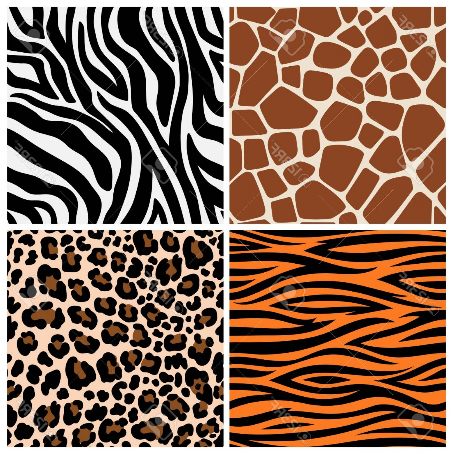 Jaguar Spots Vector: Photostock Vector Zebra Giraffe And Leopard Patterns Vector Tiger Stripes And Jaguar Spots Fur Giraffe And Zebra Seaml