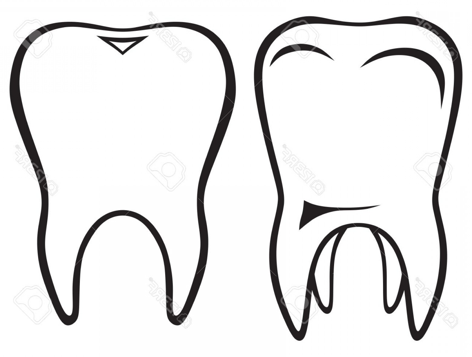 Tooth Outline Vector: Phototooth Isolated On White Background Silhouette