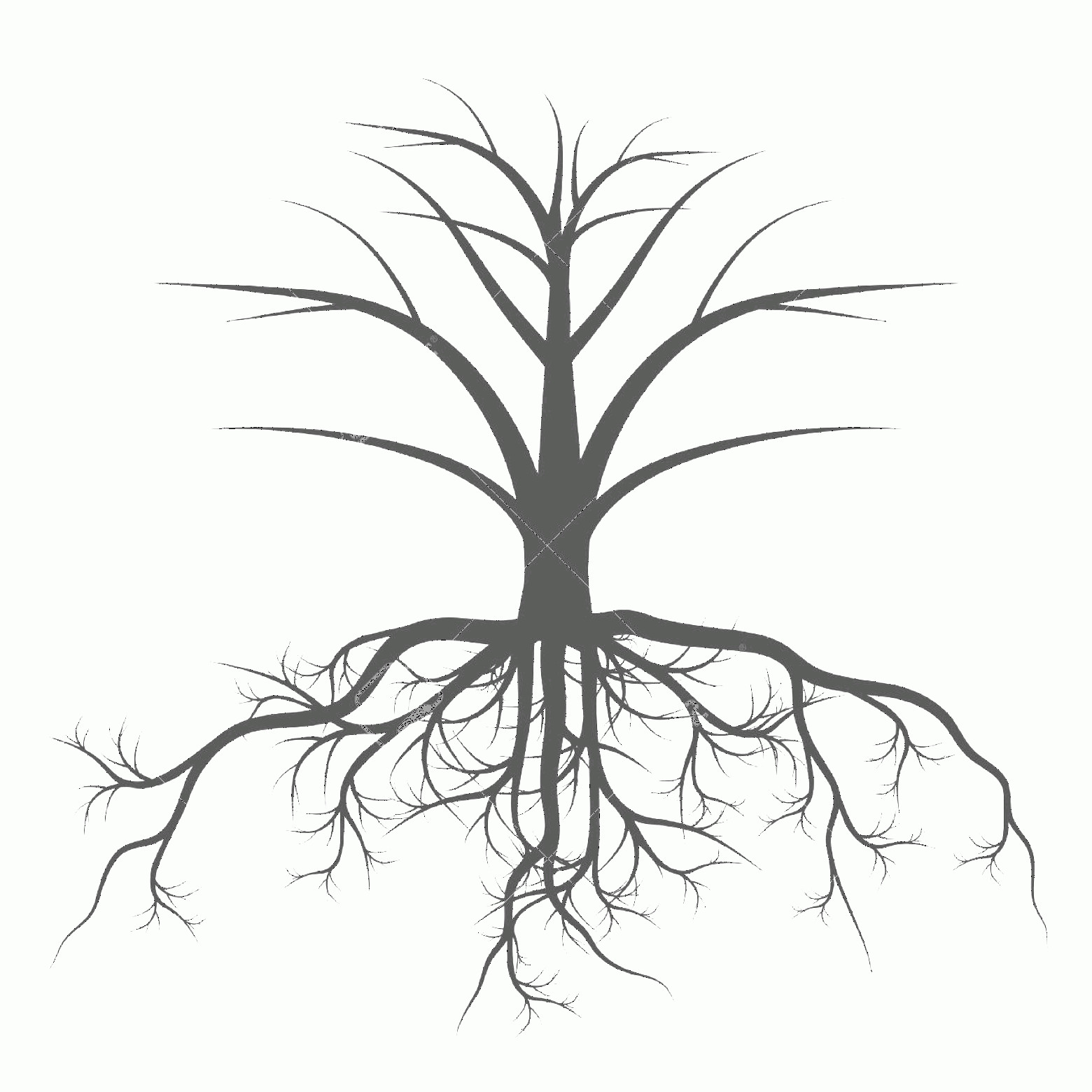 Vector Tree With Roots Drawing: Phototree With Roots Background Vector Concept For Poster