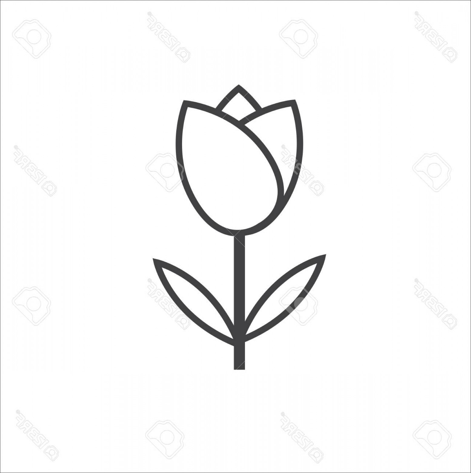 Tulip Icon Vector: Phototulip Icon Vector Outline On White Background