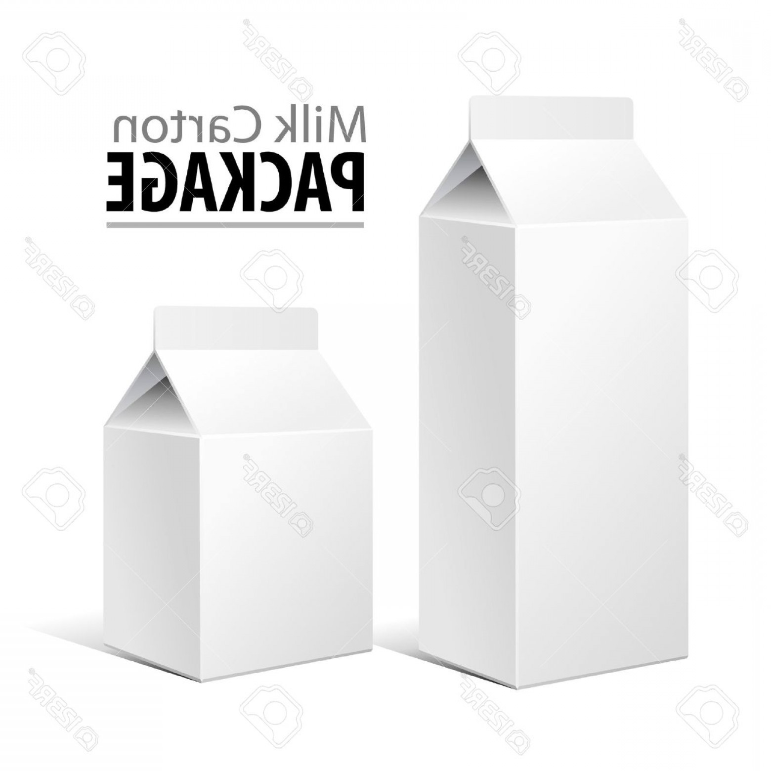 Vector Milk Container: Phototwo Milk Carton Packages Blank White