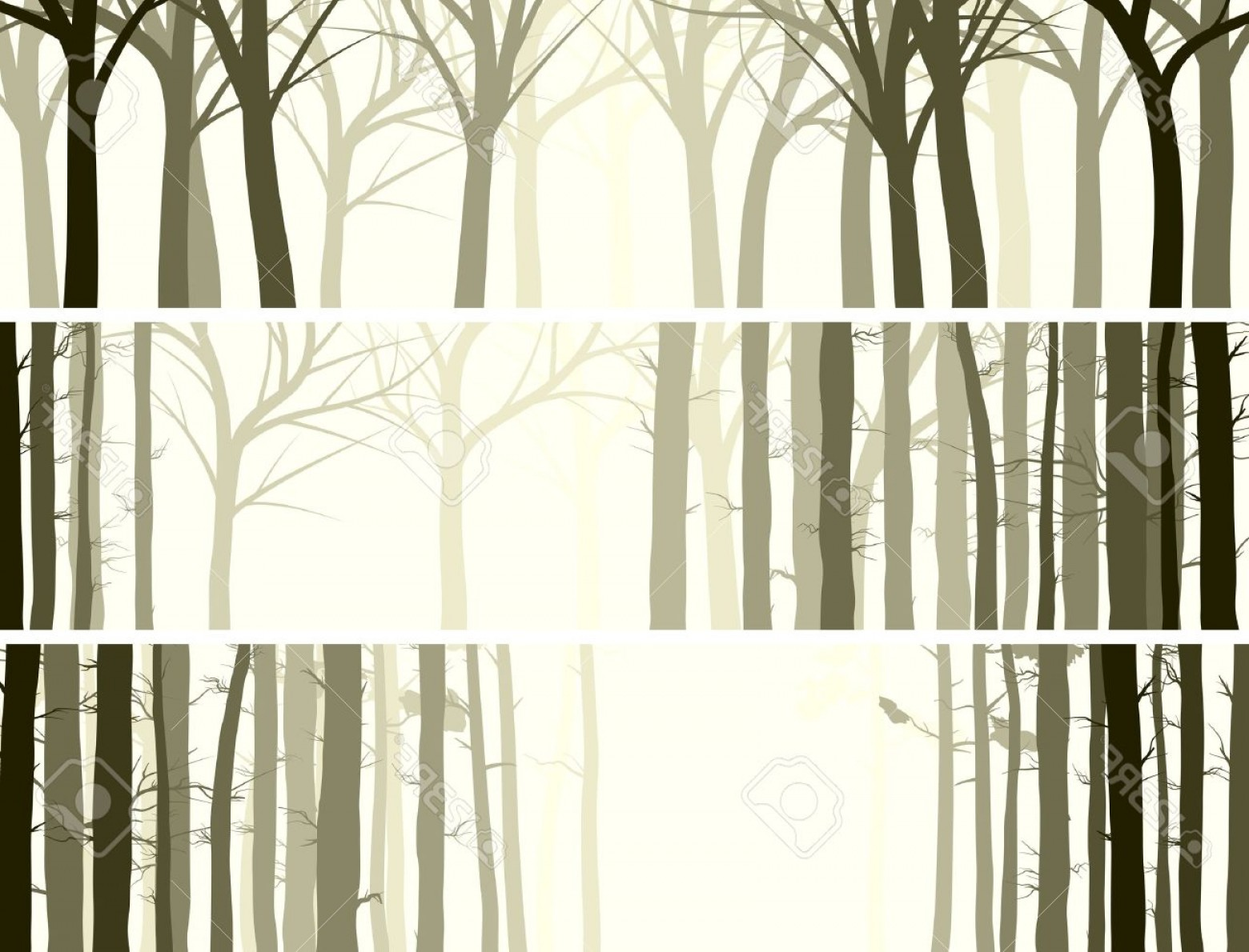 Tree Trunk Silhouette Vector: Photovector Abstract Horizontal Banner With Many Tree Trunks Coniferous And Deciduous Forest