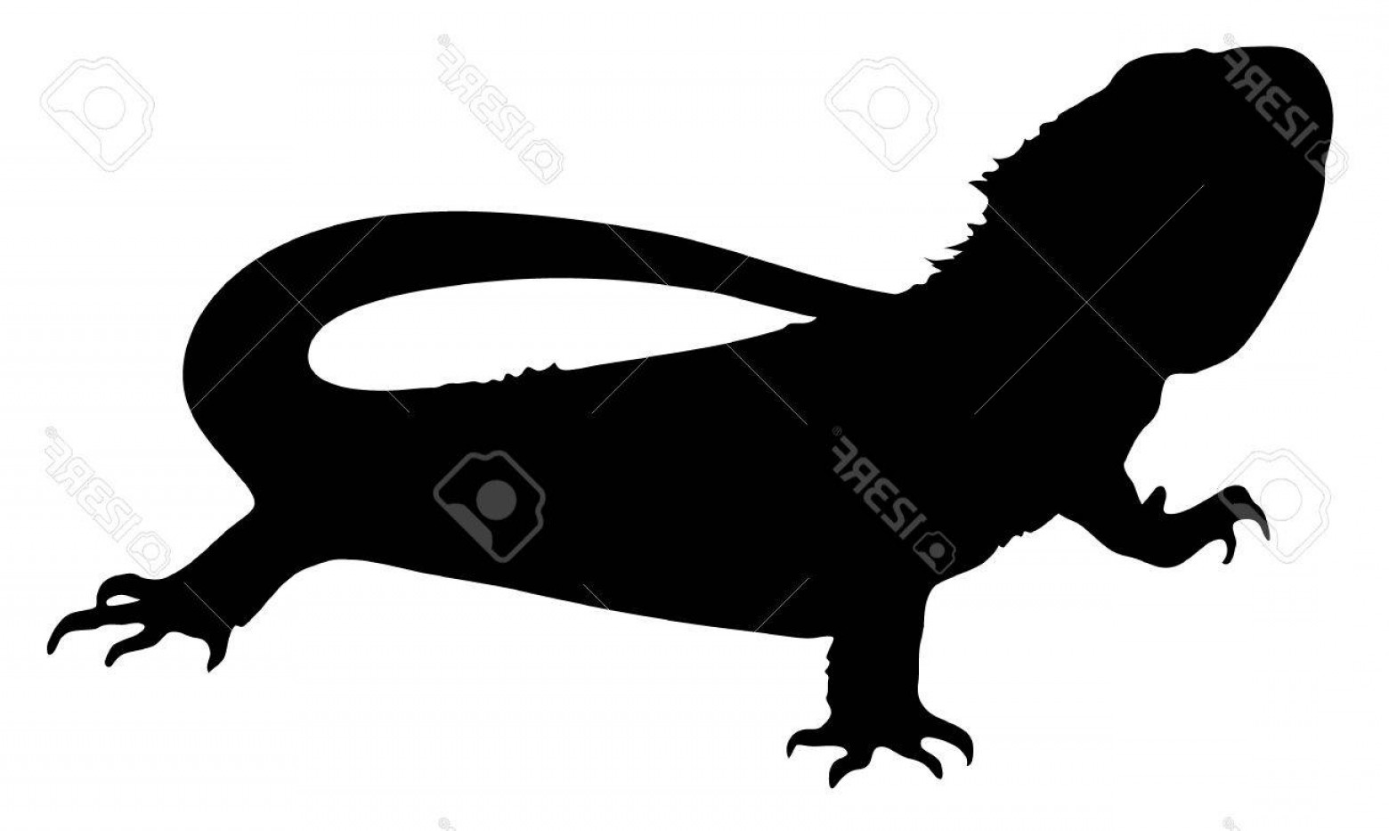 Baby Dragon Silhouette Vector: Photovector Graphic Silhouette Of A Bearded Dragon