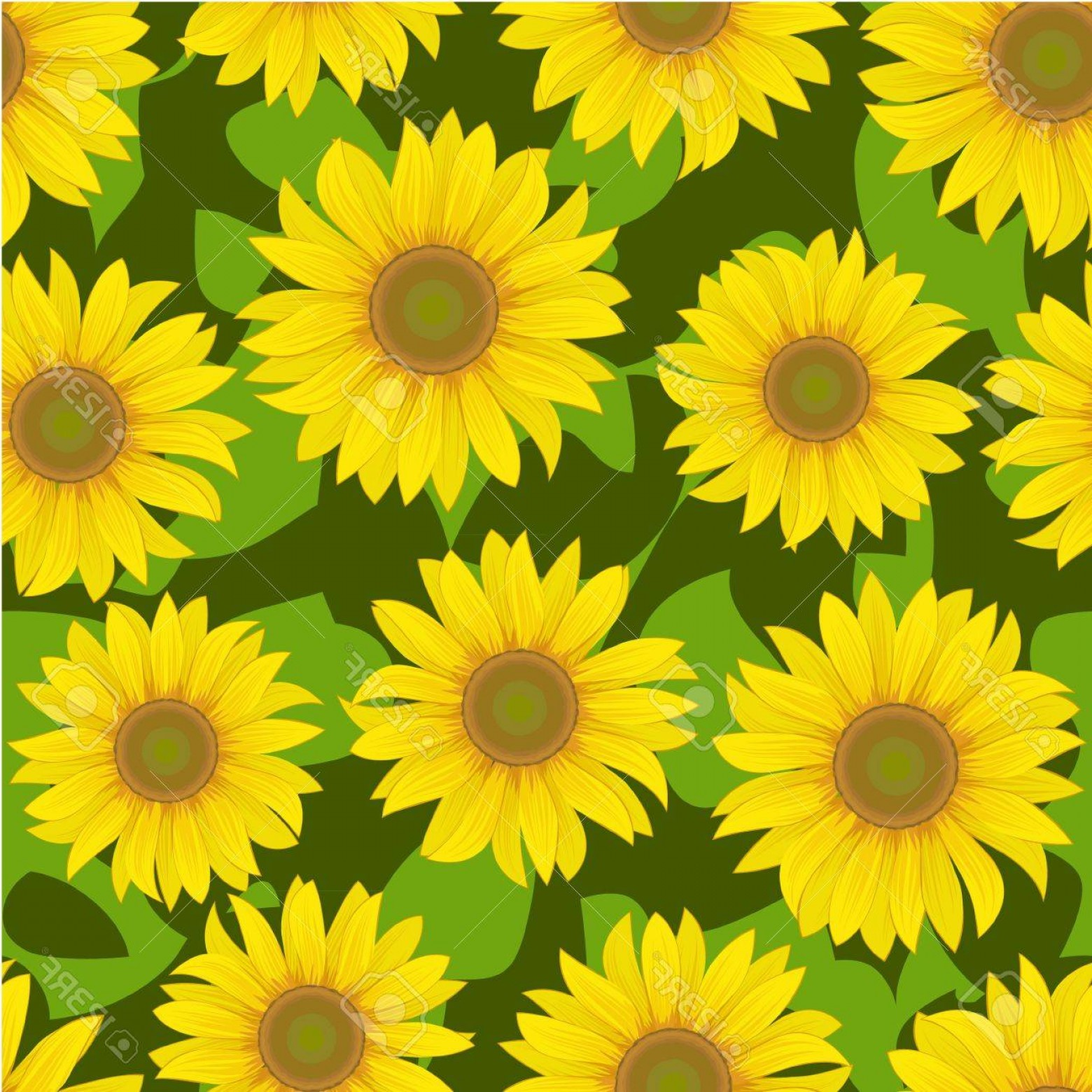 Sunflower Vector Pattern: Photovector Yellow Sunflower Flower Seamless Background Pattern