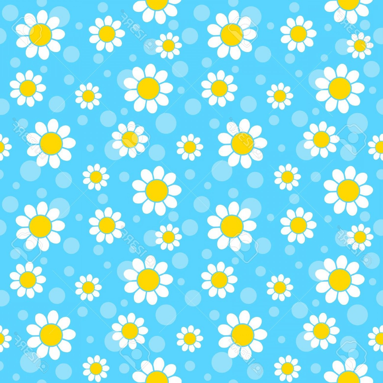 Blue Daisy Flower Vector: Photowhite Flowers On Blue Background Seamless Pattern