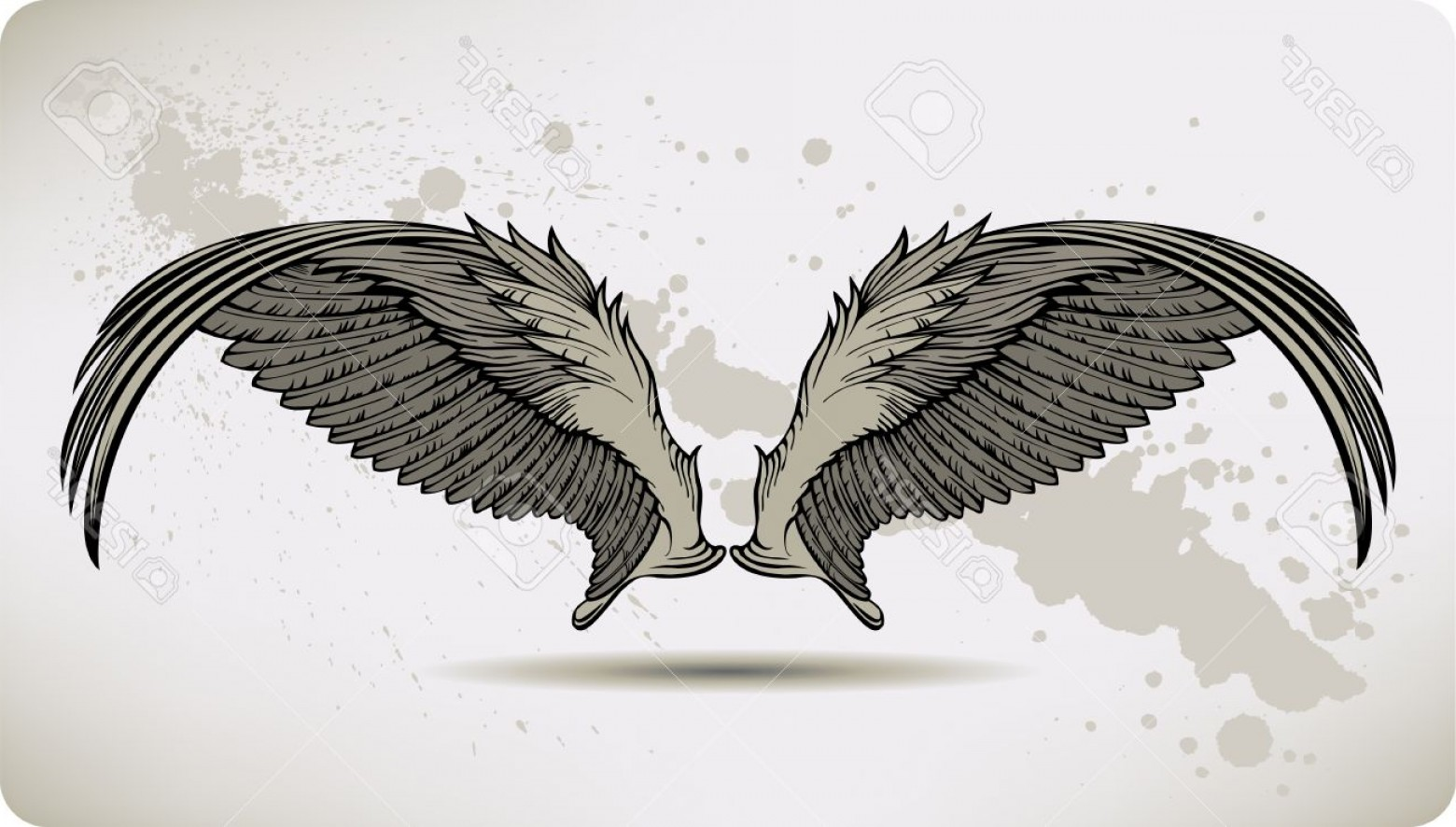 Falcon Wing Vector Art: Photowings Griffon Hand Drawing Vector Illustration