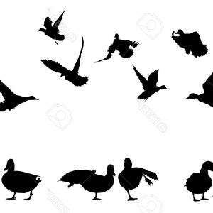 Flying Duck Outline Vector: Huntsman On Lake Shoots At Flying Duck Silhouettes Vector Clipart