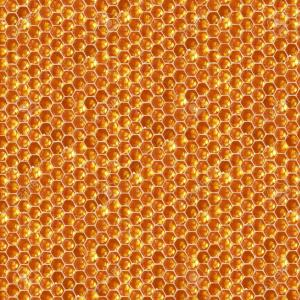 High Res Honeycomb Vector: Photonatural Honey Comb Hexagonal Texture Macro Photo High Resolution