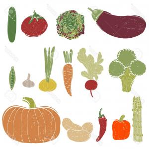 Organic Vector Books: Photostock Illustration Fresh Vegetables Set Hand Drawn Illustration Made In Vector Isolated Vegetables Can Be Used In Resta