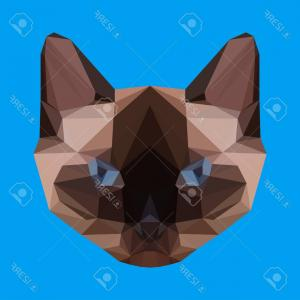 Siamese Cat Vector Transparent Background: Photostock Vector Isolated Siamese Cat On White Background