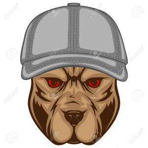 Crown Dog Collar Vector: Photostock Vector Abstract Vector Color Illustration Portrait Of Fighting Dogs Head Of Dog Breed Pit Bull In Caps