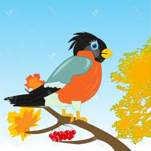 Vector Beautiful Bird: Photostock Vector Beautiful Bird Bullfinch On Branch Tree By Autumn