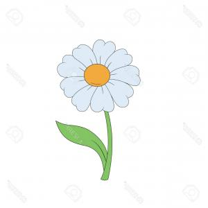 Simple Vector Daisy: Photostock Vector Cartoon Daisy Simple Flower On White Background Vector Illustration