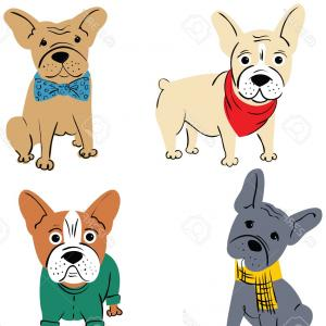 Marine Bulldog Logo In Vector: French Bulldog Vector Set Of Cute Bulldogs Face Gm