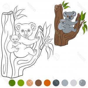 Baby Tree Vector: Baby Shower Greeting Card Baby Gender Reveal Baby Girl Baby Owl Owl Family With Gm