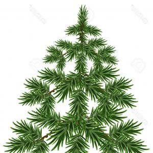Pine Tree Vector Format: Stock Illustration Christmas Tree Snow Winter Fir Tree Green Pine Tree Isolated Illustrarion Vector Format Image
