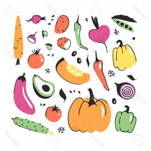Vegetable Vector Graphics: Photostock Vector Hand Drawn Set Of Vegetable Vector Artistic Drawing Food Summer Illustration