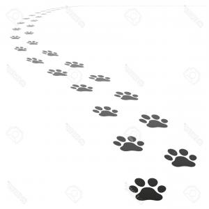 Walking Away Vector: Photostock Vector Perspective Footpath Of Vector Dog Prints Walking Away From The Point Of View