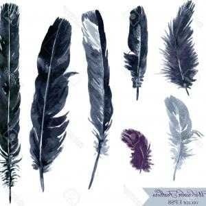 Vector Drawing Feathers: Photostock Vector Set Of Plumes Watercolor Drawing Feathers Hand Drawn Vector Illustration