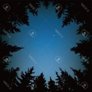 Dark Forest Vector: Photostock Vector Vector Background Of Blue Night Sky With Stars And Dark Forest Trees Circle Of Black Pine Trees Form
