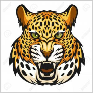 Jaguar Panther Head Vector: Photostock Vector Vector Jaguar Portrait Jaguar Head Isolated On White Background