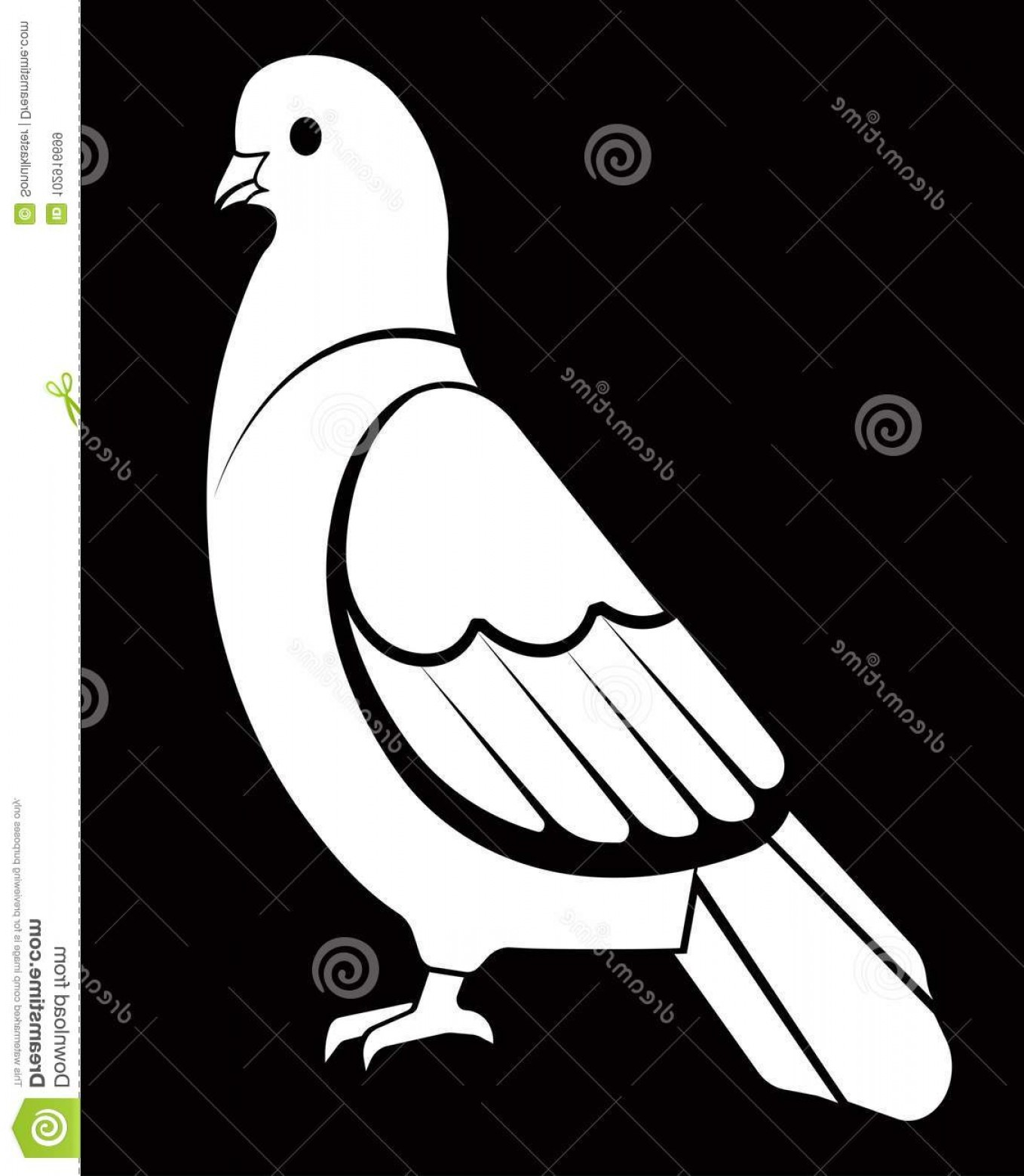 White Bird Vector: Pigeon Dove White Bird Vector Logo Template Isolated Symbol Icon Peace Freedom Post Mail Delivery Tattoo Pigeon Image