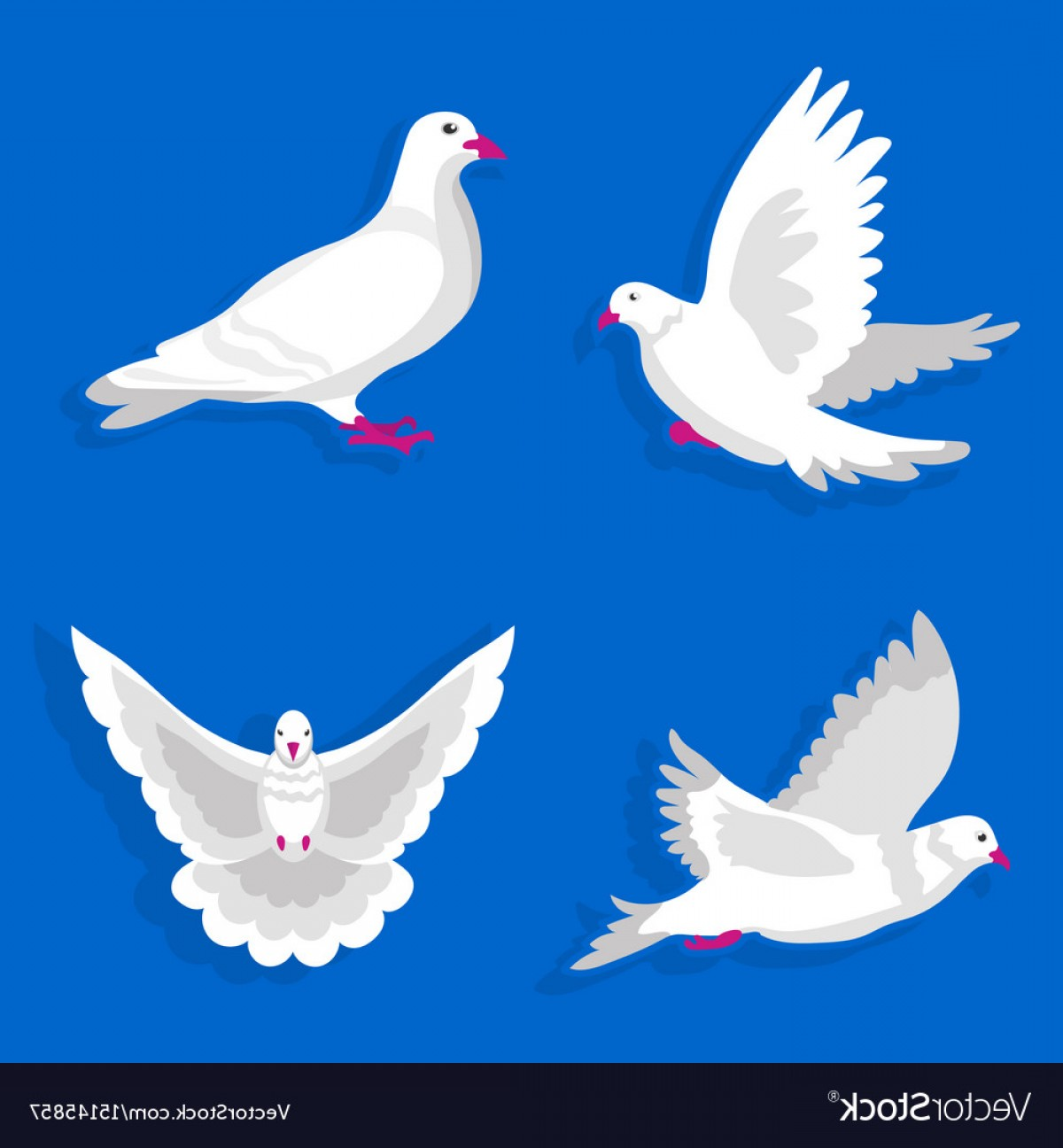 White Bird Vector: Pigeons Or White Dove Birds Flying Flat Vector