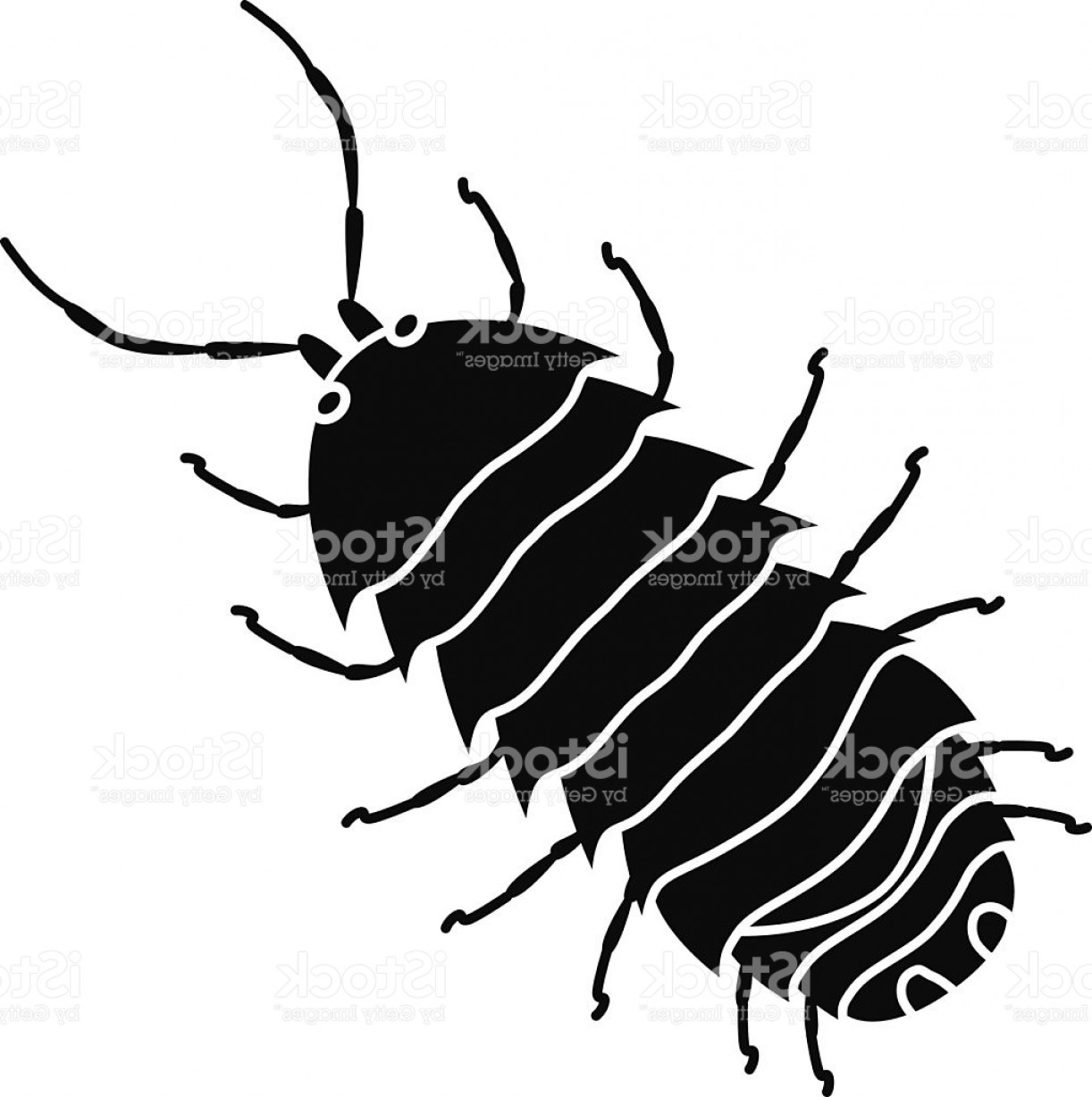 Bug Vector Art: Pill Bug Commonly Called Roly Poly In Black And White Gm