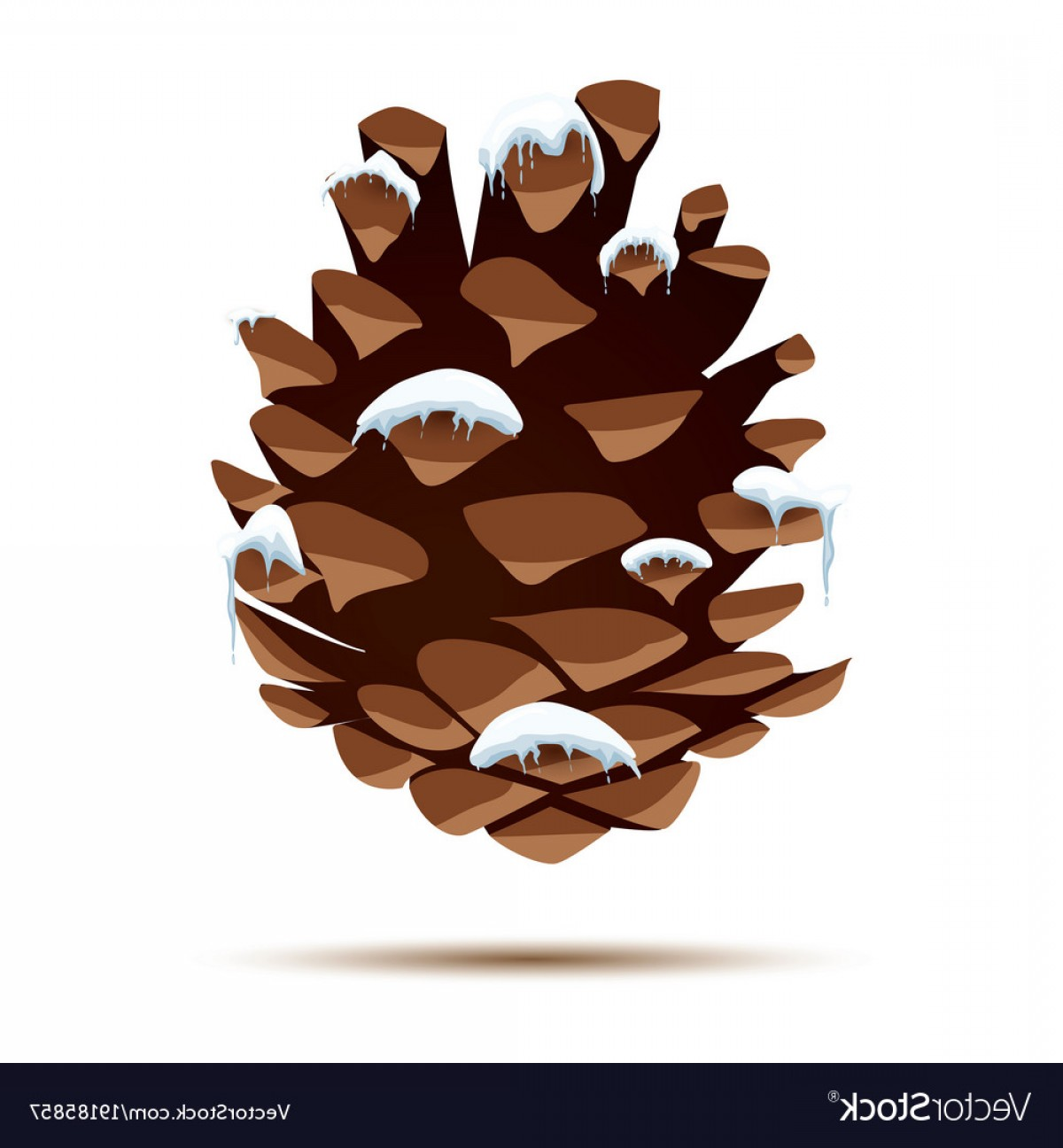 Snow Cone Vector Free: Pine Cone With Snow Cap Isolated On White Vector